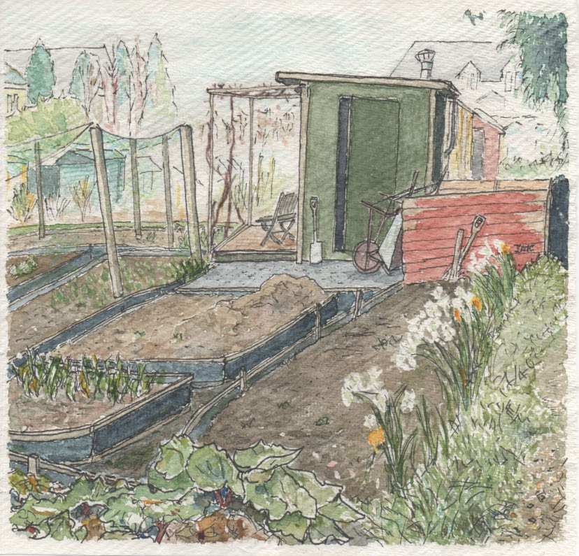 A watercolour painting of a plot